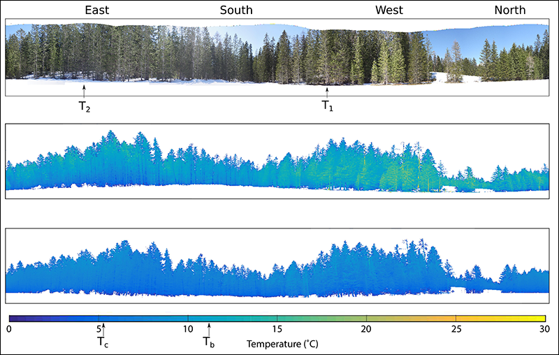 Researchers examine how small-scare variations in forest air and surface temperature impact snowmelt