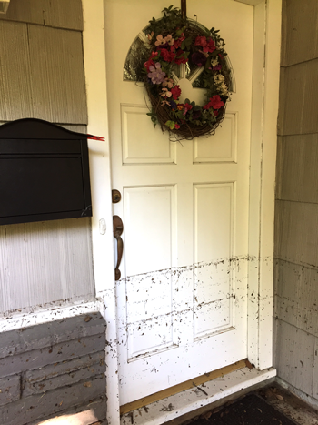 A high-water mark made by flotsam clings to the door of a Houston home flooded by Harvey.