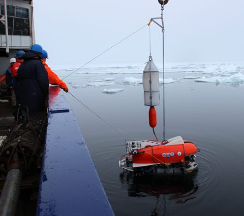 Drone deployed in Arctic.