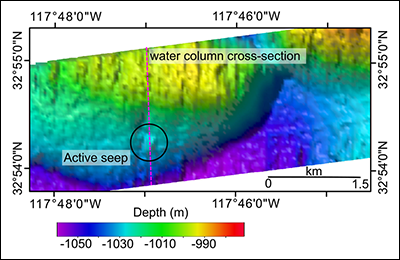 Multibeam bathymetry of the mound associated with the Del Mar methane seep