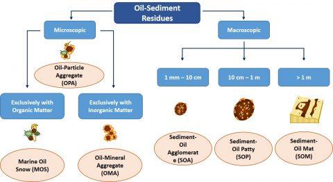 Spills, Sediment, and Shoreline Contamination - Eos