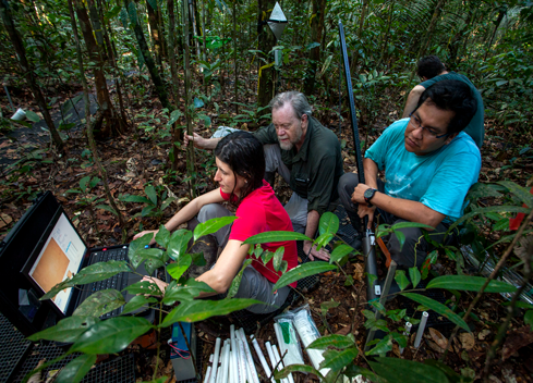 Amazon-rain-forest-researchers