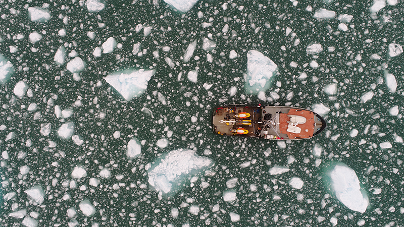Drone image of the M/V Steller, surrounded by ice. Sometimes, if there was too much ice in the sea around the boat, the researchers had to pause their daily activities or risk damage to their expensive equipment. Credit: David Sutherland