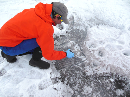 Study co-author Nathan Chrismas collecting surface ice for analysis.