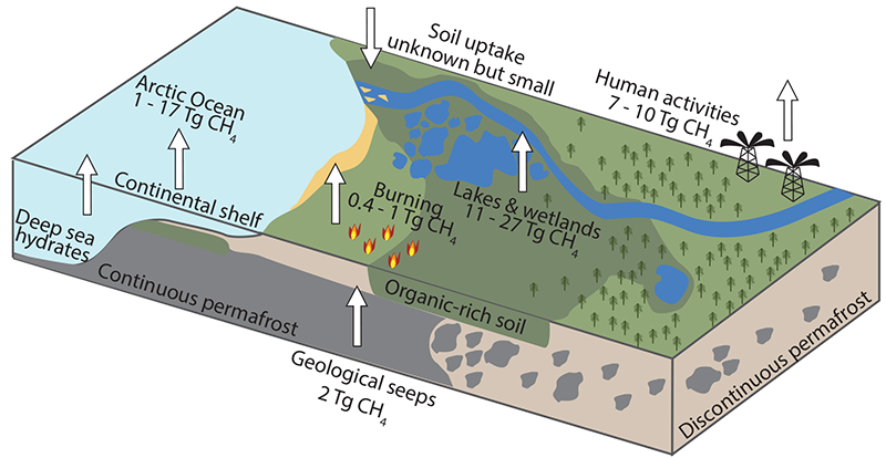 Lakes and wetlands are the largest of the primary sources of CH<em>4</em> emissions from northern high latitudes.