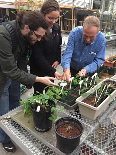 Guinan two students tend plants.