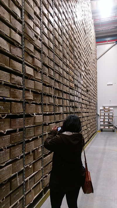 Physical sample archive of geological data