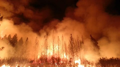 2013 fire in Stanislaus National Forest, California
