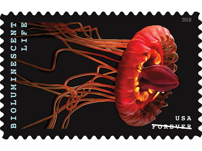 New Postage Stamps Focus on Bioluminescent Marine Life - Eos