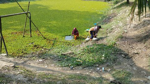 Village women collect water from polluted ponds in coastal Bangladesh.