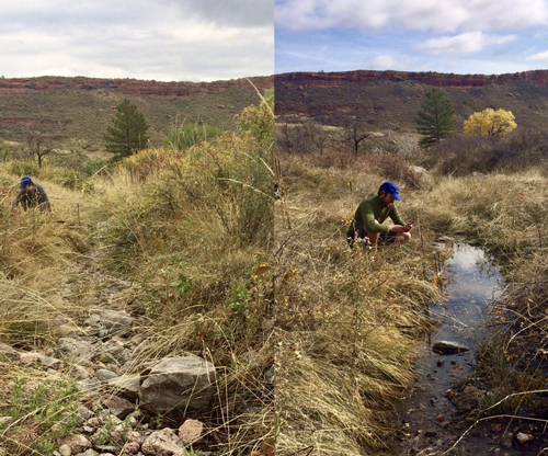 The Stream Tracker app helps citizen scientists fill in information on intermittent streams in the places they frequent.