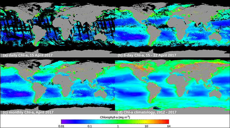 OCView maps show four time averages for the VIIRS-derived chlorophyll a concentration in the world's oceans