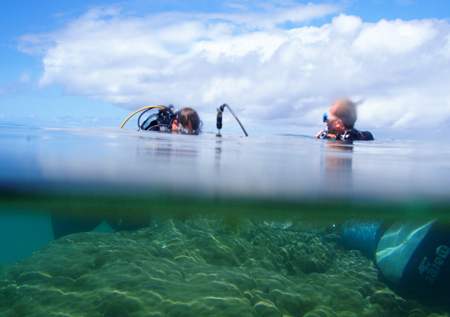 Two divers drill into a giant Porites colony off Madagascar.