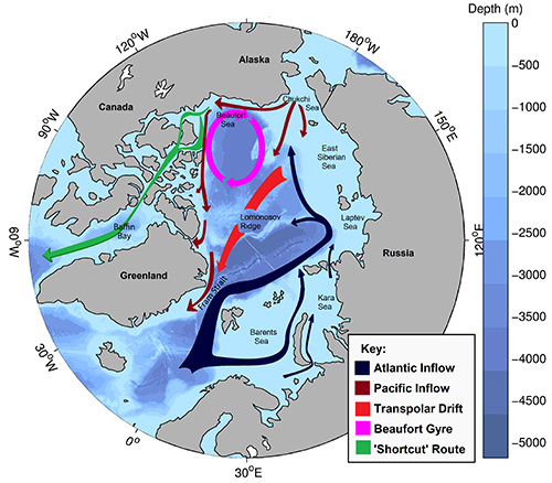 Arctic ocean surface circulation