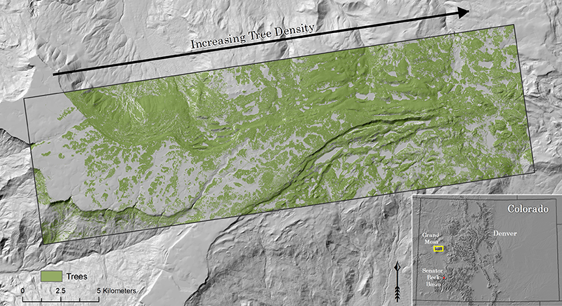The Grand Mesa, Colo., site contains a natural west-to-east gradient of increasing forest density.