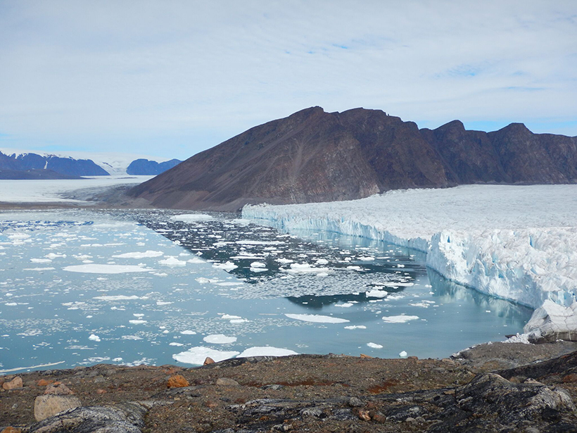Glacial Meltwater Plumes Support Greenland Phytoplankton ...