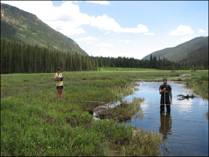 Undergraduate students measure flow and sediment transport along the Colorado River in Rocky Mountain National Park