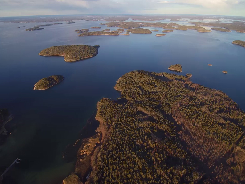 Just How Anomalous Is the Vast Baltic Sea Dead Zone?