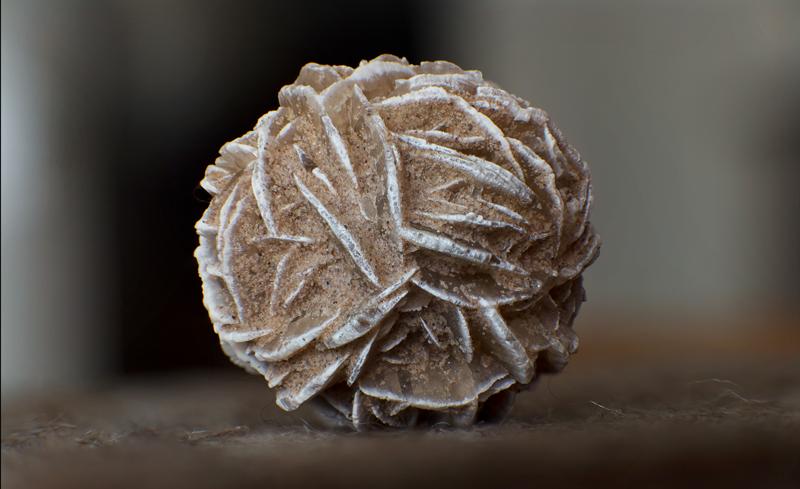 A barite rose