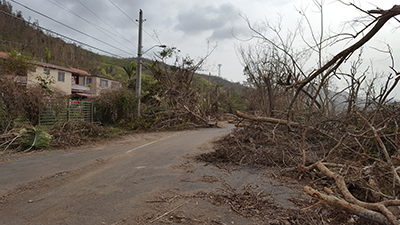 A view of the destruction to the road just outside of SJG observatory in Cayey, taken 27 September 2017.