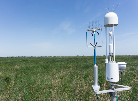 Instruments monitor restored wetlands in California to give scientists insight into the wetlands' effect on local surface temperatures.