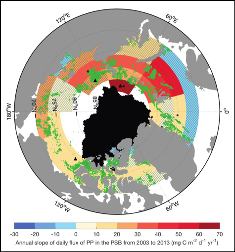 Annual trends in daily flux of primary productivity during phytoplankton spring bloom