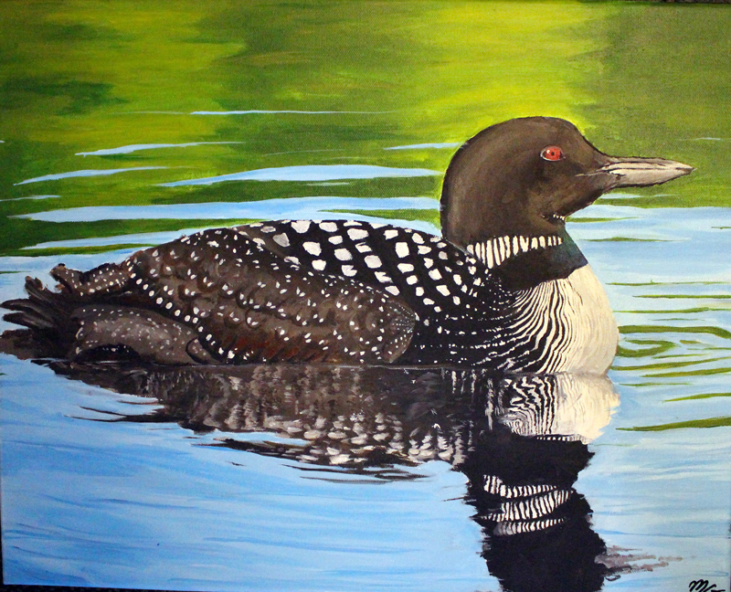 Common Loon. Credit: Michela G.