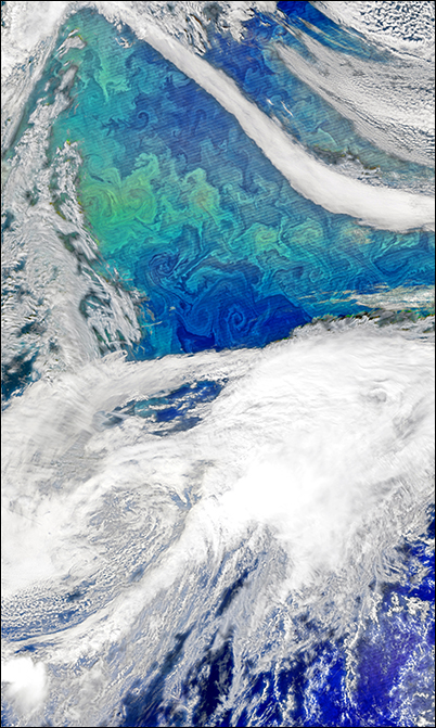 A satellite view of a North Atlantic phytoplankton bloom