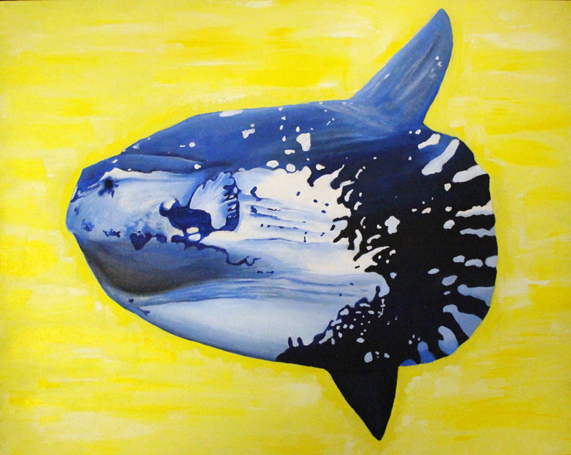 Ocean Sunfish. Credit: Paige Meadel