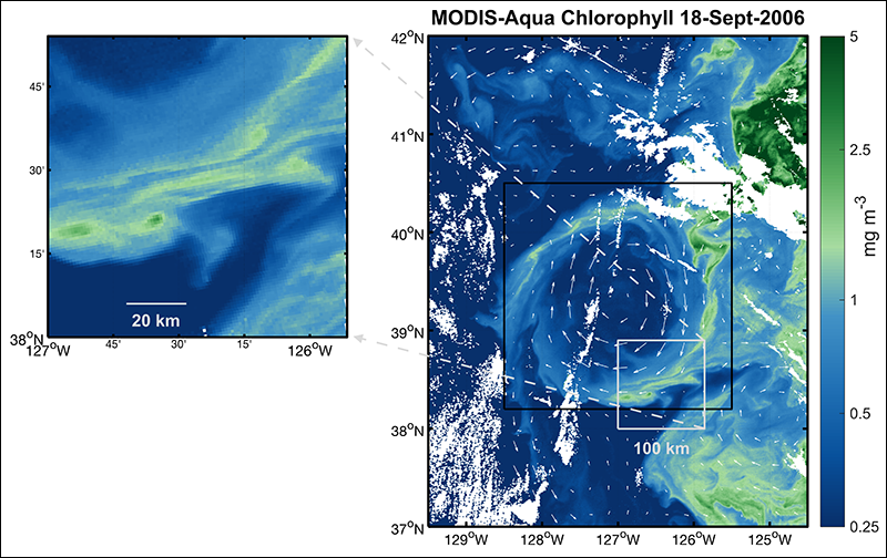 Chlorophyll a concentrations in a mesoscale eddy offshore of central California on 18 September 2006