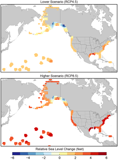 Downscaled sea level rise projections