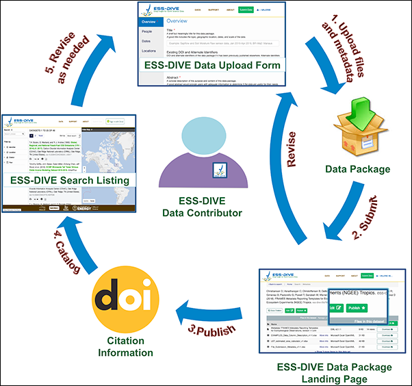 ESS-DIVE's publication life cycle allows users to iteratively curate, package, and update their data and metadata.