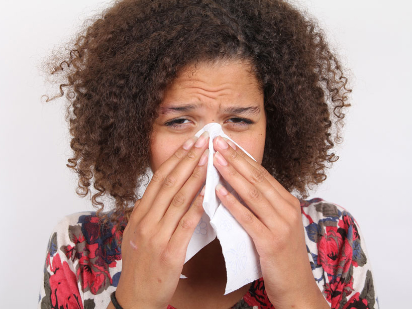Google Trends Could Help Scientists Track Allergy Season
