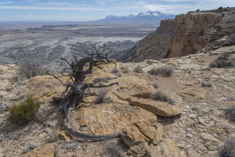 A recent photo of Utah's Henry Mountains, whose formation geomorphology pioneer Gilbert helped explain