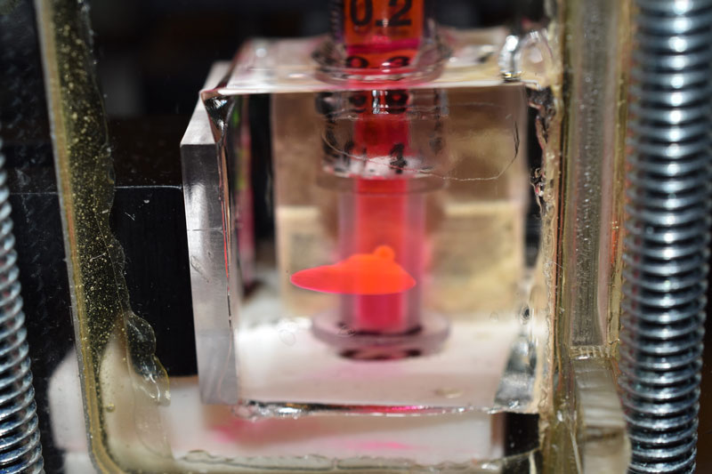 Laboratory setup, showing how fluid forced into a small flaw in a block of hydrogel fans out, creating a finely fractured pattern.