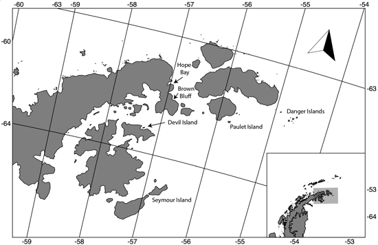 Adélie penguin colonies along the northern Antarctic Peninsula that were excavated by this and previous studies to determine occupation history.