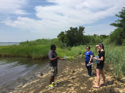 Geo-social scientists in a Maryland wetland