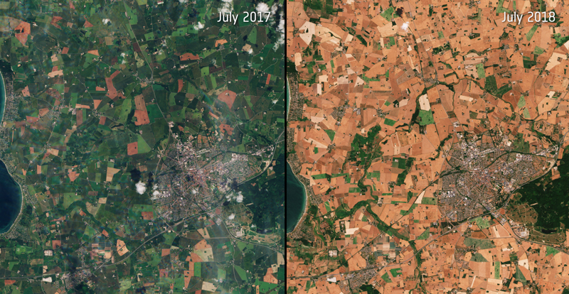 Side-by-side views of Denmark in 2017 and 2018, highlighting recent drought conditions