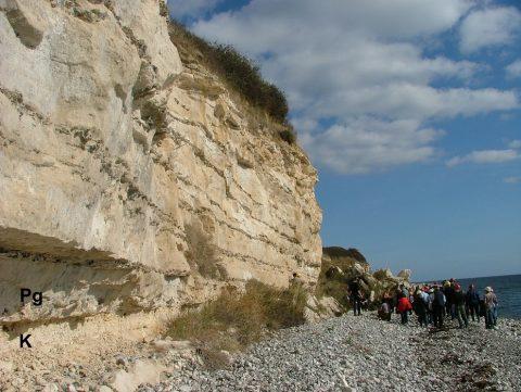 Cretaceous-Paleogene boundary