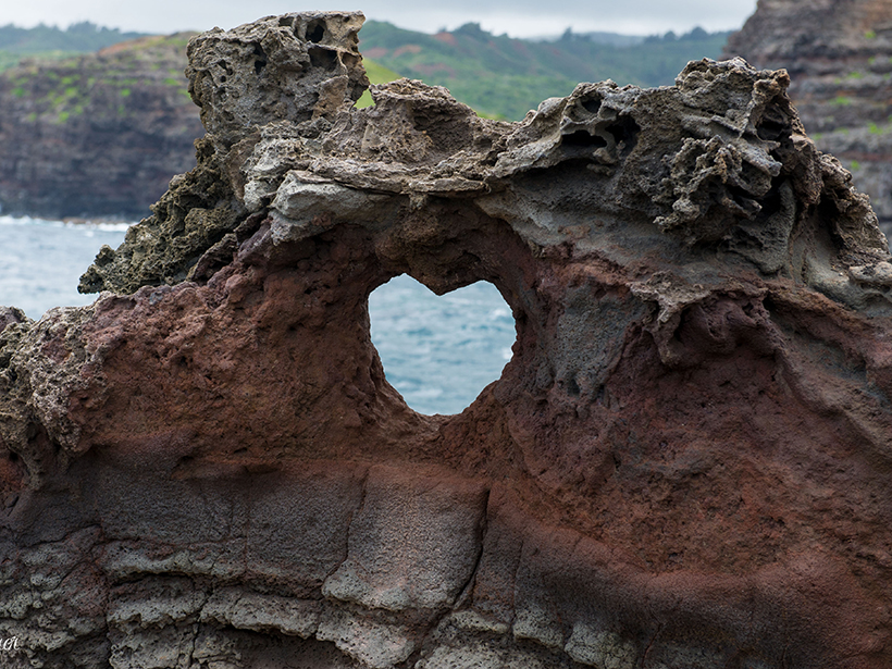 Heart-Shaped Valentines, from Nature to You