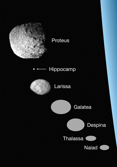 The seven inner moons of Neptune