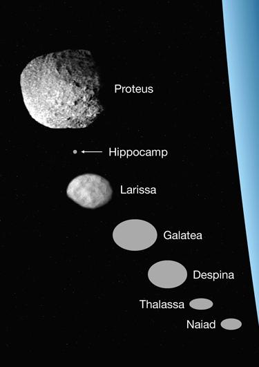 The seven inner moons of Neptune