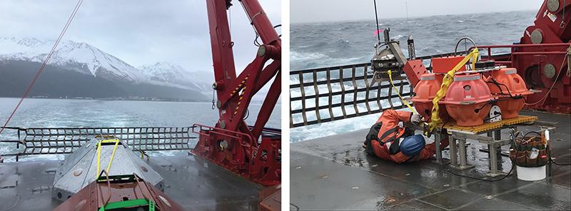 Ocean bottom seismometers used in AACSE