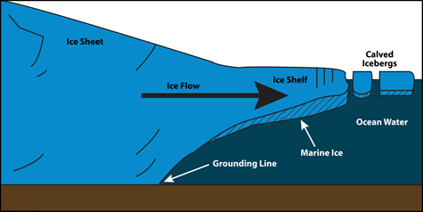 Figure showing marine ice