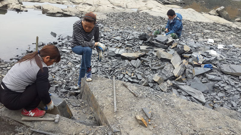 Researchers digging up fossils along the banks of the Danshui River.