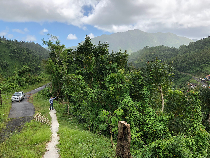 A pathway leads to a community water treatment plant in rural southeastern Puerto Rico.