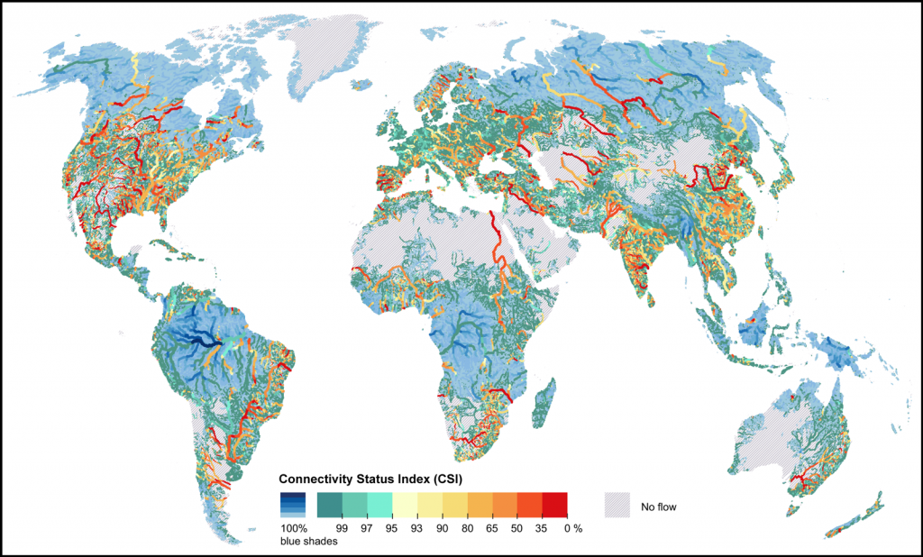 Map of rivers colored to their free-flowing status
