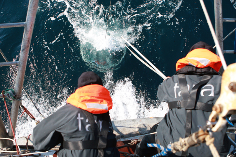 Samples being collected during the Tara Oceans expedition