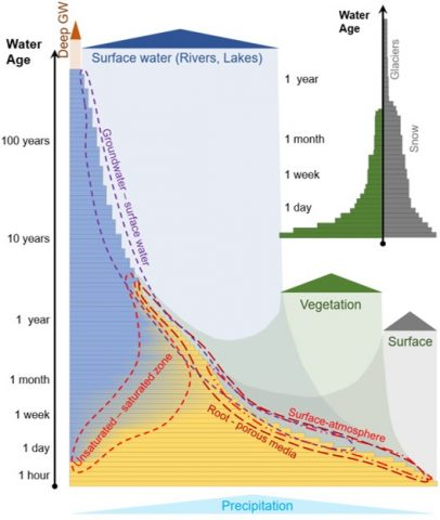 Demographics of water in the critical zone