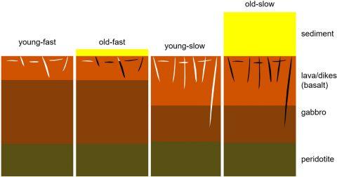 Lithologic interpretation of velocity-depth function